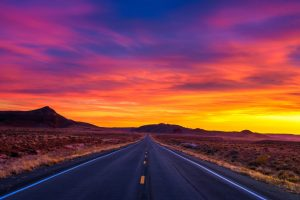 """Willie Nelson: """"On The Road Again"""""""
