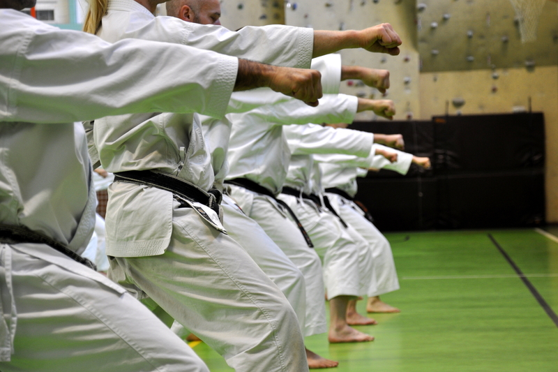 The Best Martial Arts for Every Goal