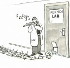 Of Mice Vasectomies and Men