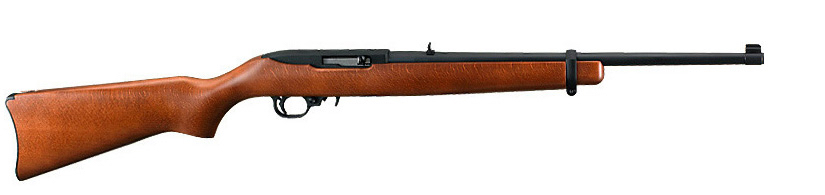 Your First Rifle – This is the One